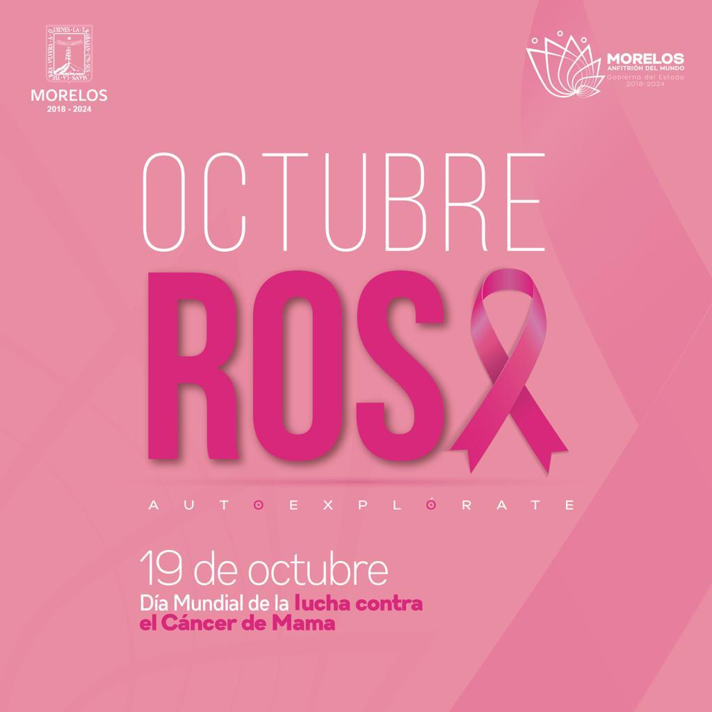 rosa cancer de mama