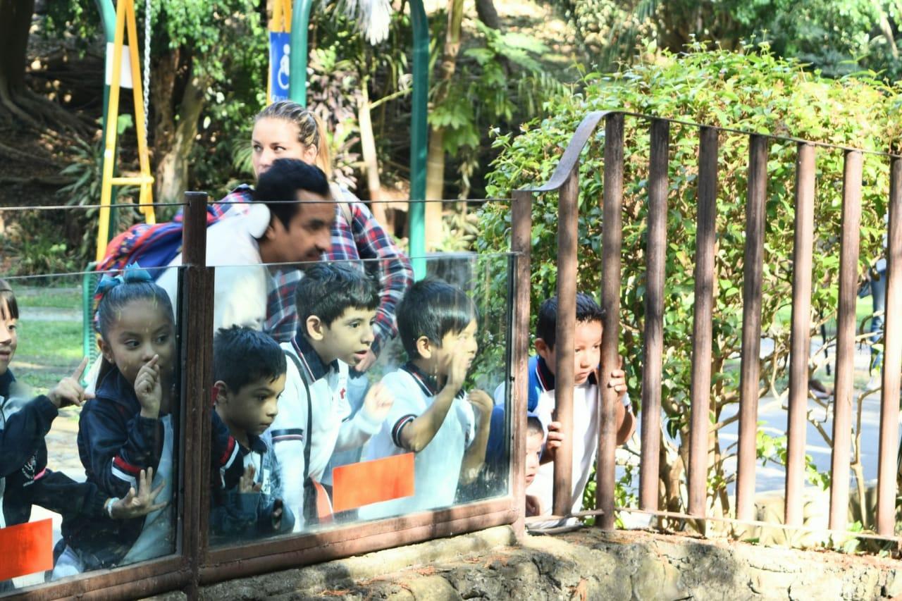 Niños aulas vivas